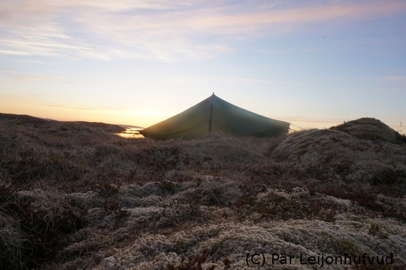 Akto tent in sunset on Lauvøya