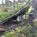 Open shelter on a survival course